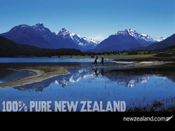 Time to put 100% into making NZ pure