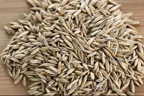 זרעי שיפון אורגני
