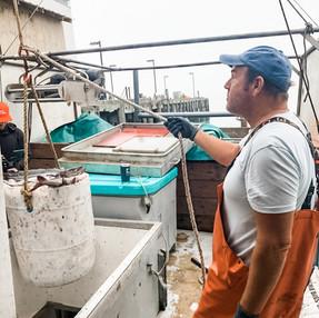 Fishermen Wellness: Hearing