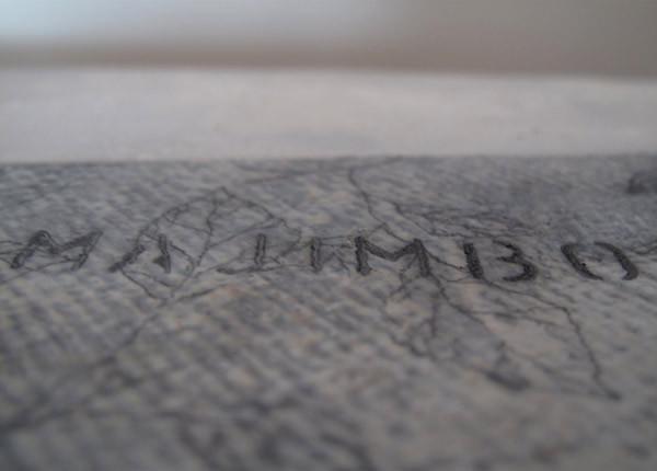 L'improbable (ocimum gratissimum), wood and metal, 80x20cms, 2012