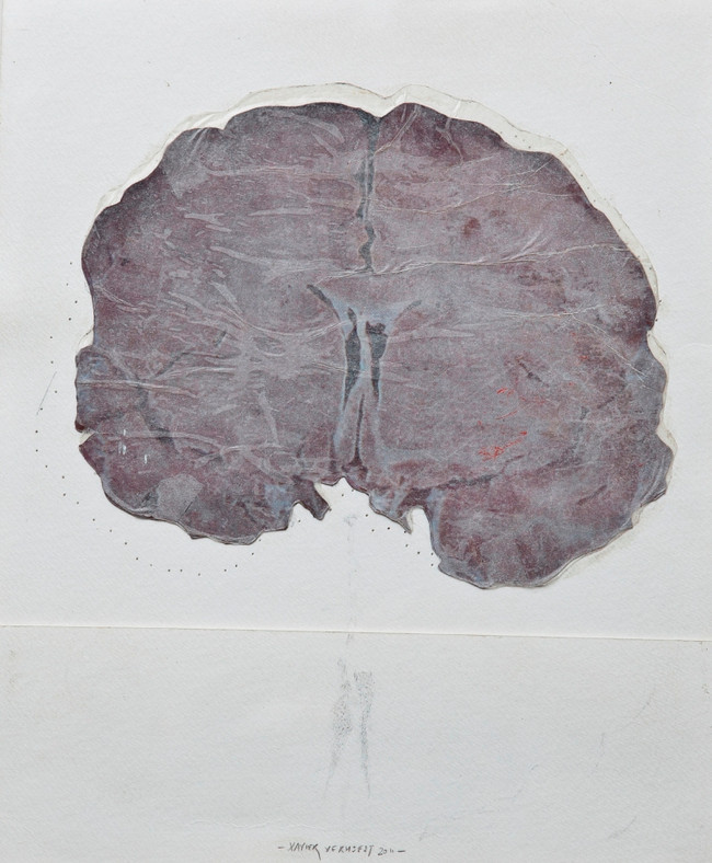 I have only what I remember (II), mixed media on paper, 50x30cms, 2012