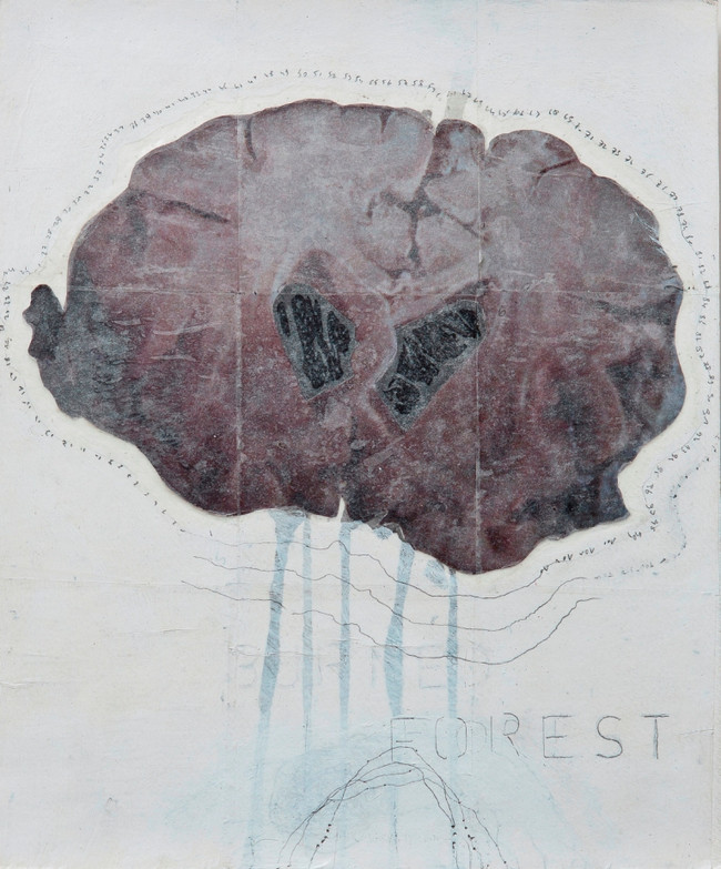 I have only what I remember (I), mixed media on paper, 50x30cms, 2012