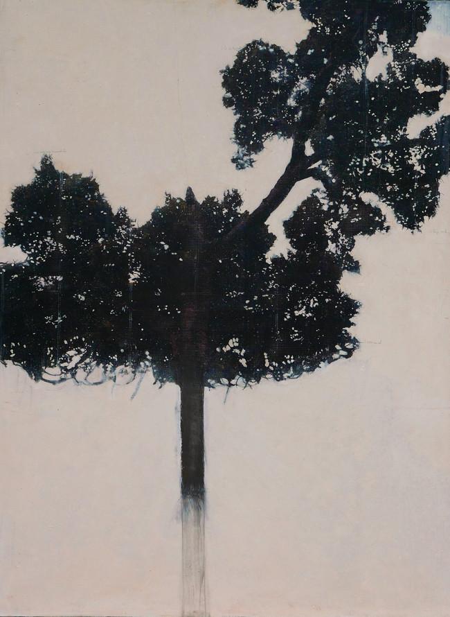 La Matiere de l'arbre, mixed media on vinyl, 110x80cms, 2012-16