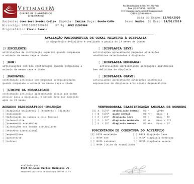 displasia-oreo1044D819-F78B-5A8D-116D-4C