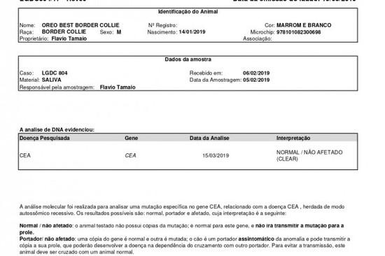 cea-oreo2A9902B1-B21E-A6CA-DA90-A59AF0EE