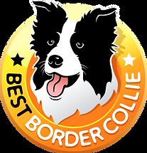 Best Border_Colie - logo.png