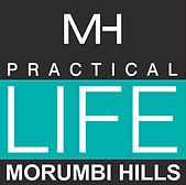 morumbi hills.jpg