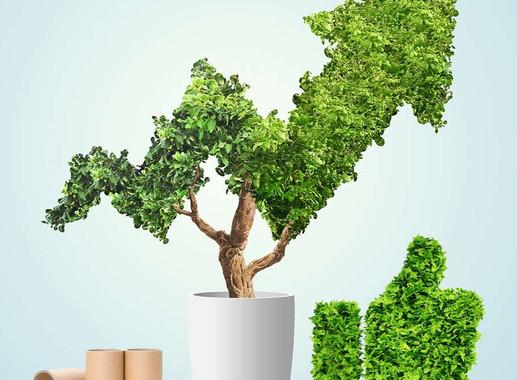 Adesivos BOPP mais economia e sustentabilidade para o seu negócio