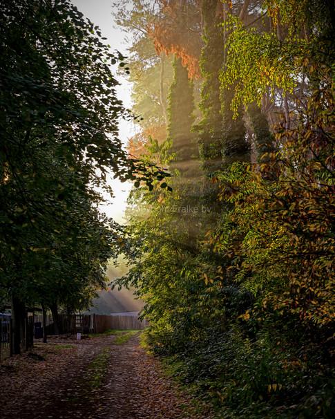 Putte, Belgium