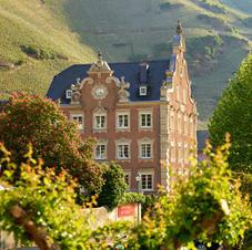 Mehr über unsere Weingüter erfahren