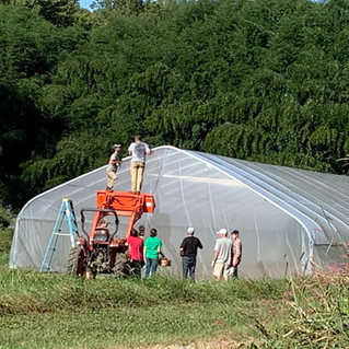 Friends, family, and neighbors raising the high tunnel