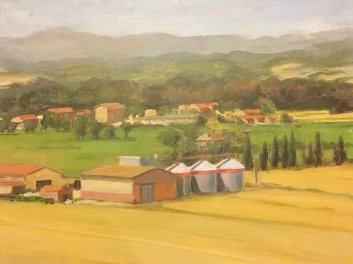 Umbrian Field