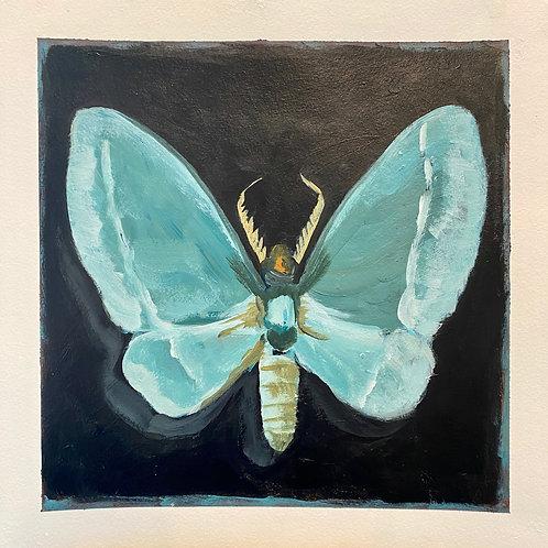 Small Emerald Moth