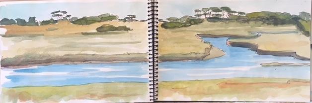 Bald Head Island: Marsh