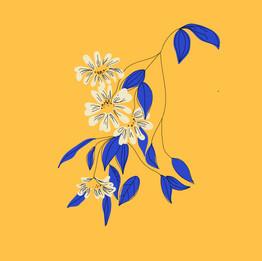 Floral Doodle-01.jpg