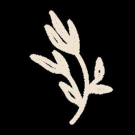 floral 2-01.png