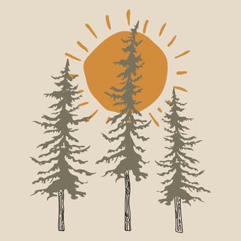 trees sun-01.jpg