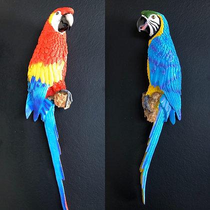 Perroquet Ara «FAUNE»
