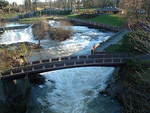tumwater falls 2.jpg