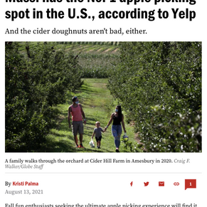 Cider Hill Farm Named #1 Spot for Apple Picking in the US