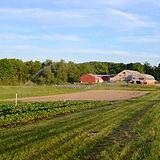 Farm Shot.jpg