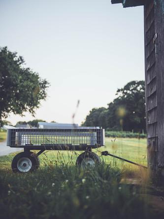 Wagon Shot.jpg