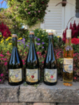 Cider Hill Cellars
