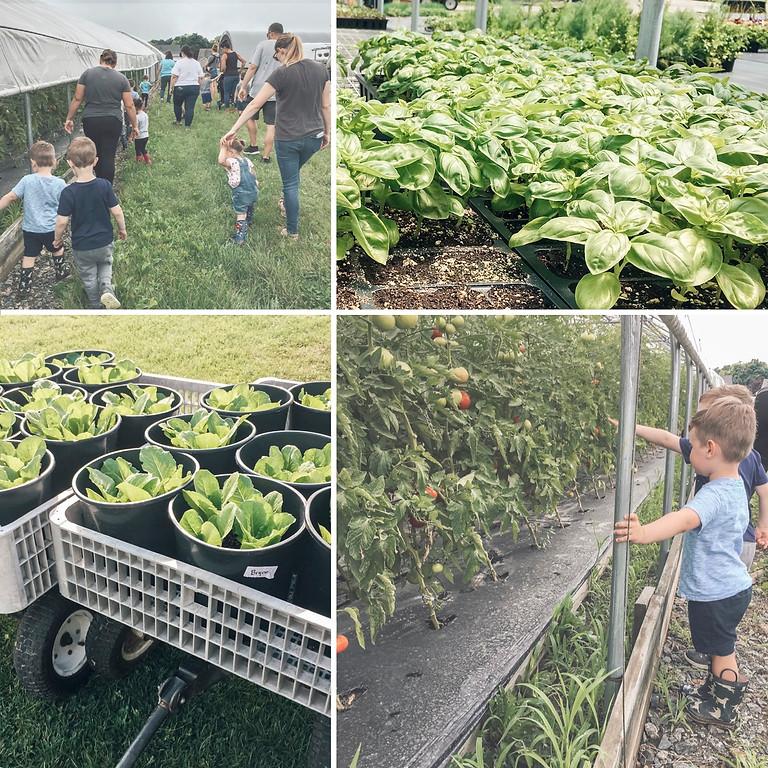Farm Tots: Plant Herb Pots
