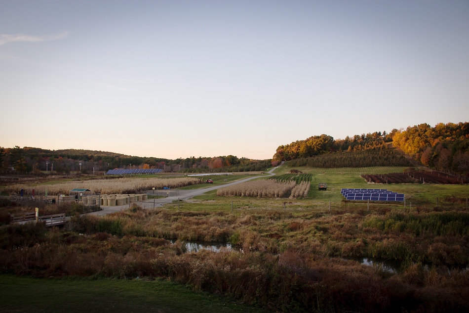 Cider Hill Farm_Oct2015-6.jpg