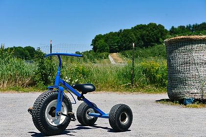 Farmer-Glenns-Trike-Yard.jpg