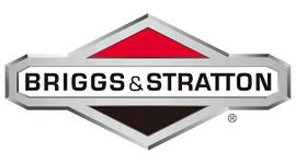 Logo Briggs.png