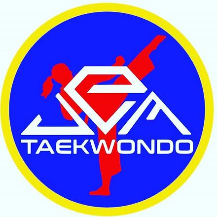 JEM Taekwondo Logo.png