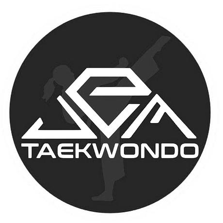 JEM Taekwondo Logo_edited.png