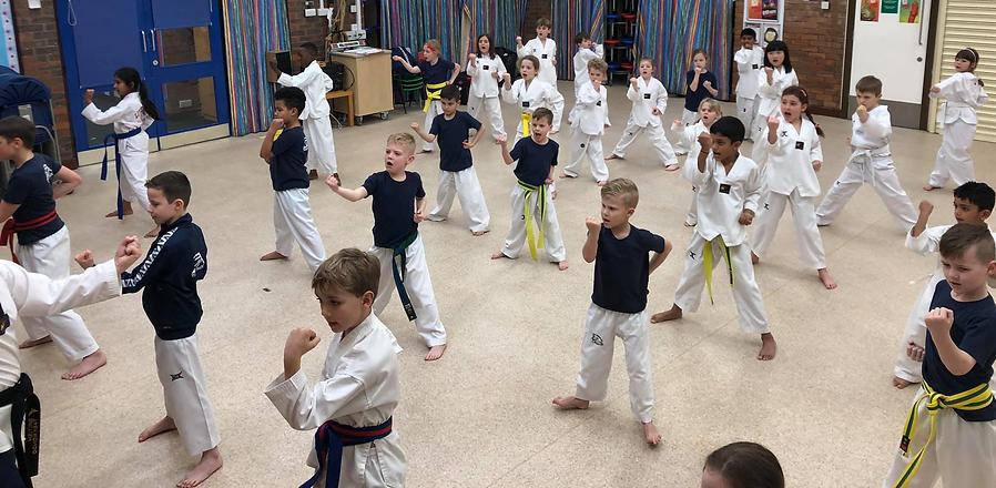 JEM Taekwondo.png