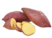 Camote.png