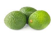 Avocado 1.jpeg