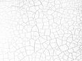 Terre craquelée