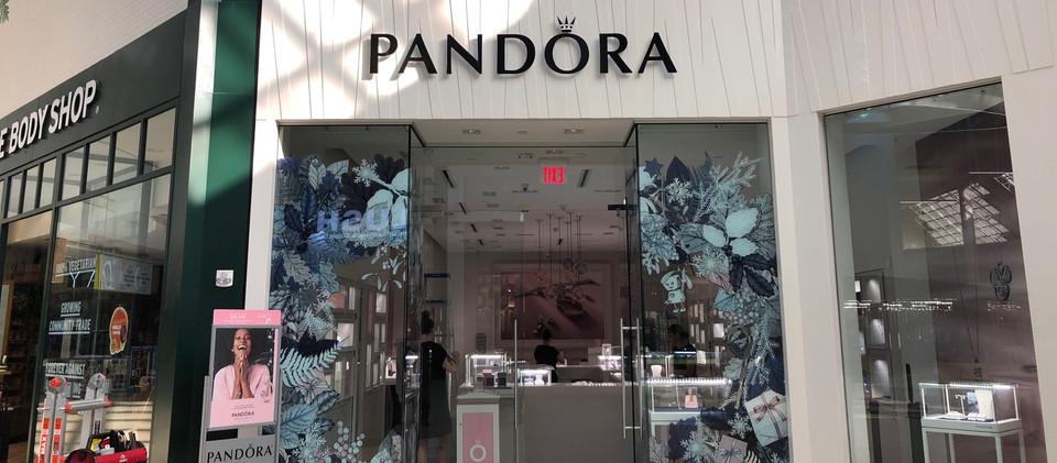 PandoraOct4.jpg