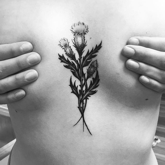 Tiny sternum thistle from today!__#tatto