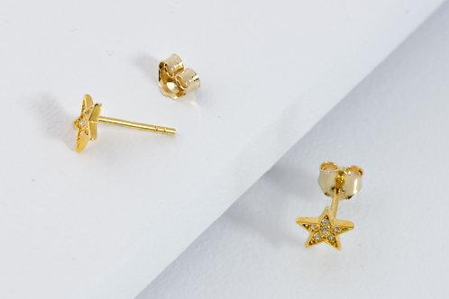Star - Gold Ohrstecker