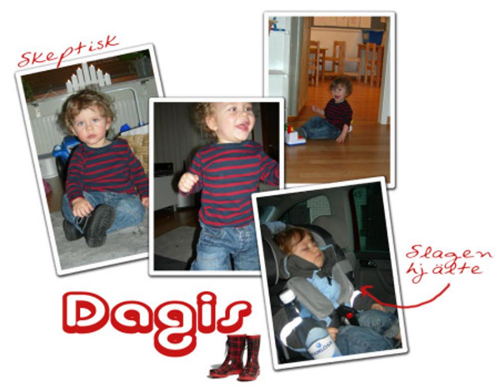 8_dagis