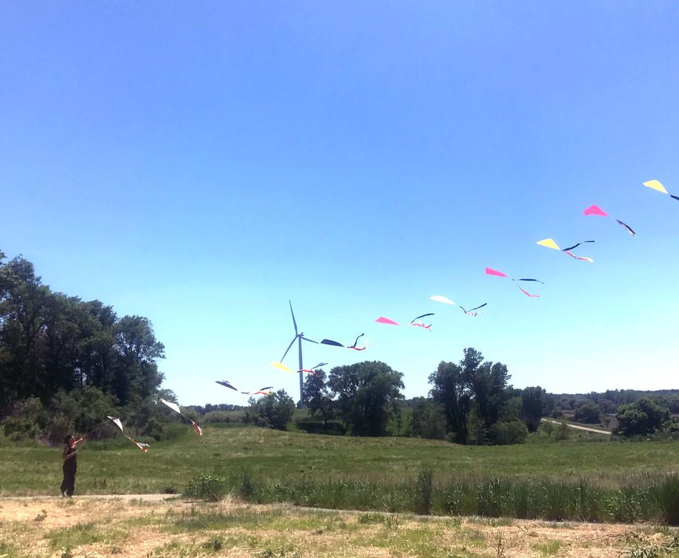 11 kites touch_crop.jpg