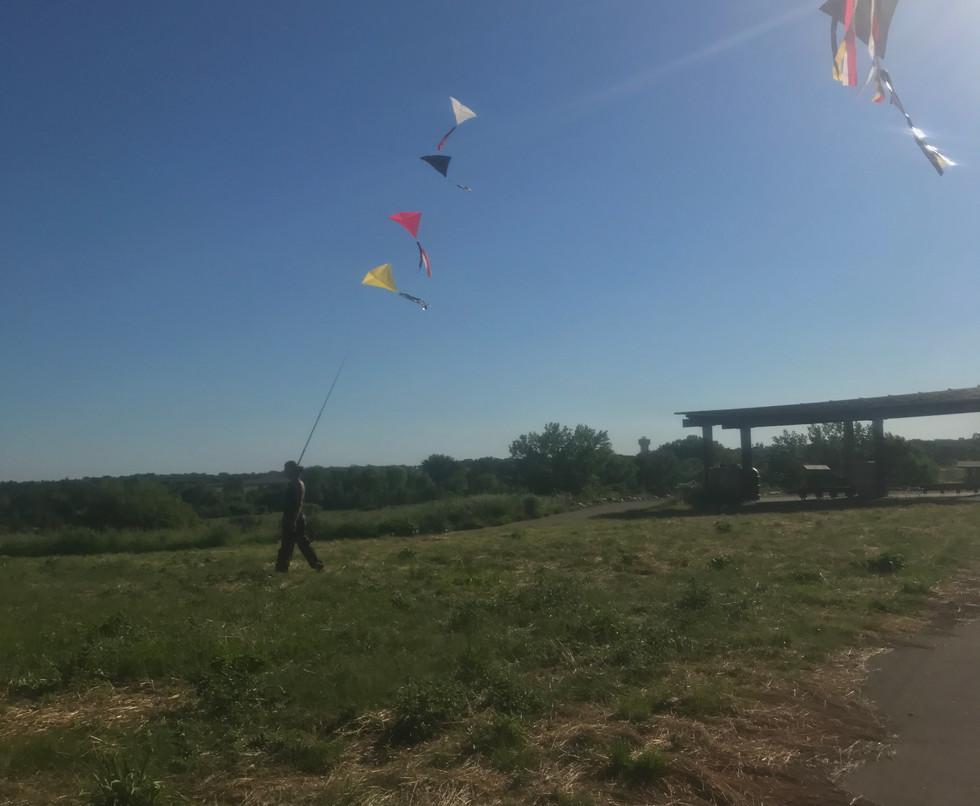 8 kites walking.JPG