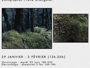 Exposition TERRA MATER espace Beaurepaire 29 janv-03 fév