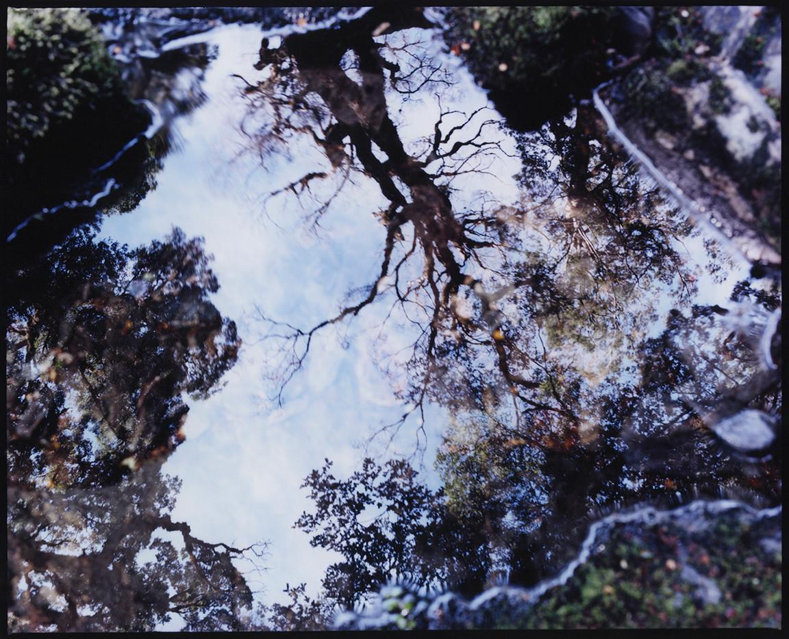 TERRA-MATER-Prune-Brenguier-13.jpg