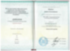 диплом мануального терапевта