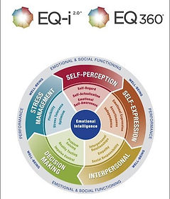 EQ-i and 360_edited.jpg