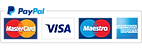 IMGBIN_payment-gateway-logo-credit-card-