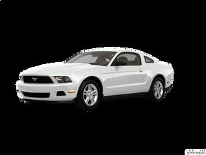 10-14 Mustang V6