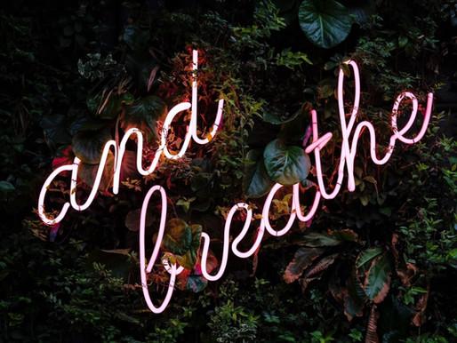 My Top Breathwork Content